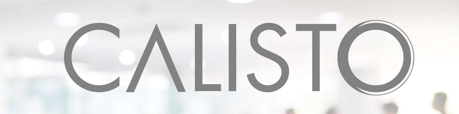 Calisto Ajans banner fotograf