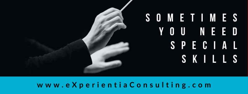 eXperientia Consulting banner fotograf