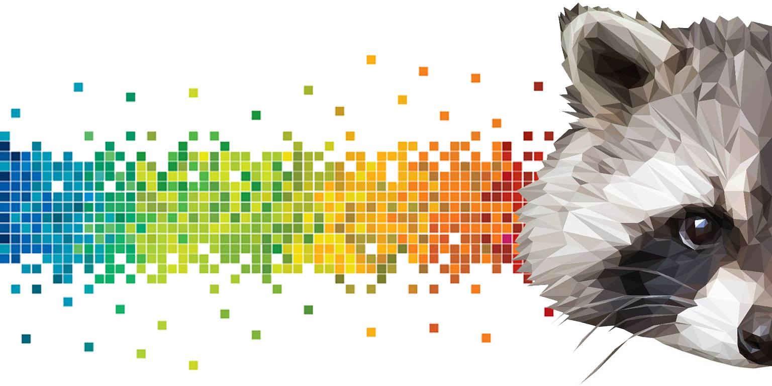 Rakun Dijital banner fotograf