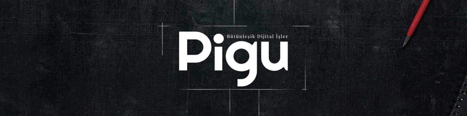Pigu Digital Agency banner fotograf